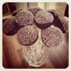 Chocolate Cake Pops from Scratch