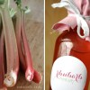 Homemade Rhubarb Syrup for perfect Spring Drinks