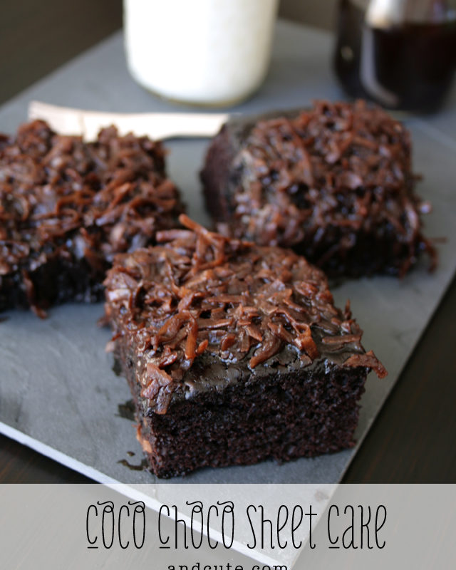 Luscious Coconut Chocolate Sheet Cake
