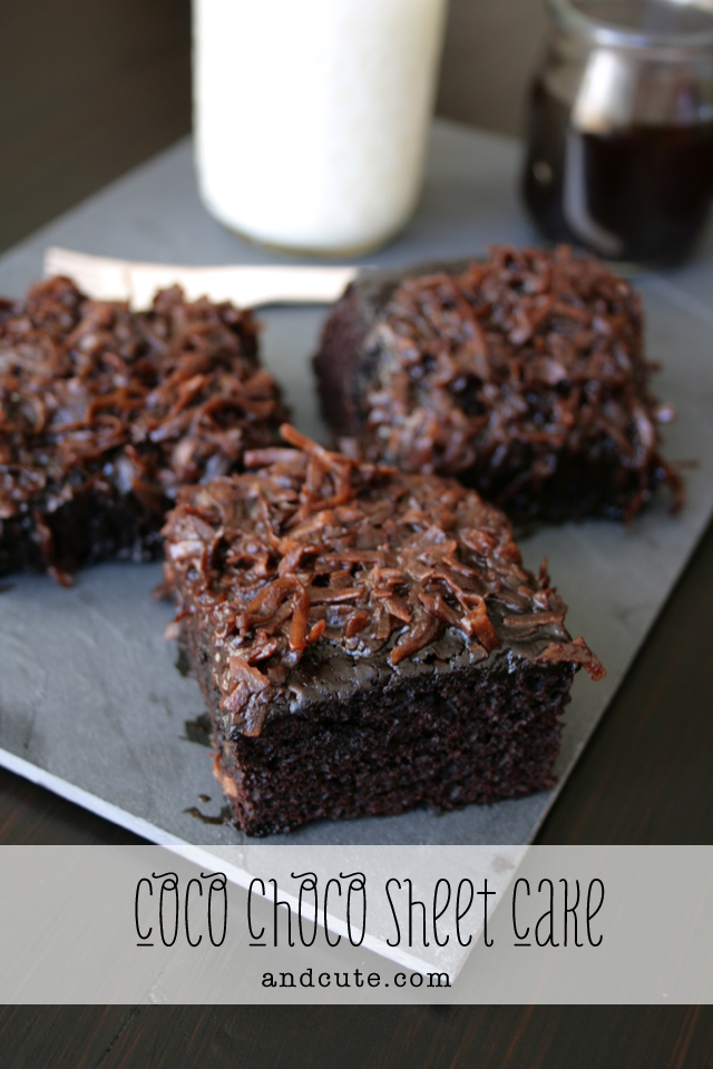 Coconut Chocolate Sheet Cake