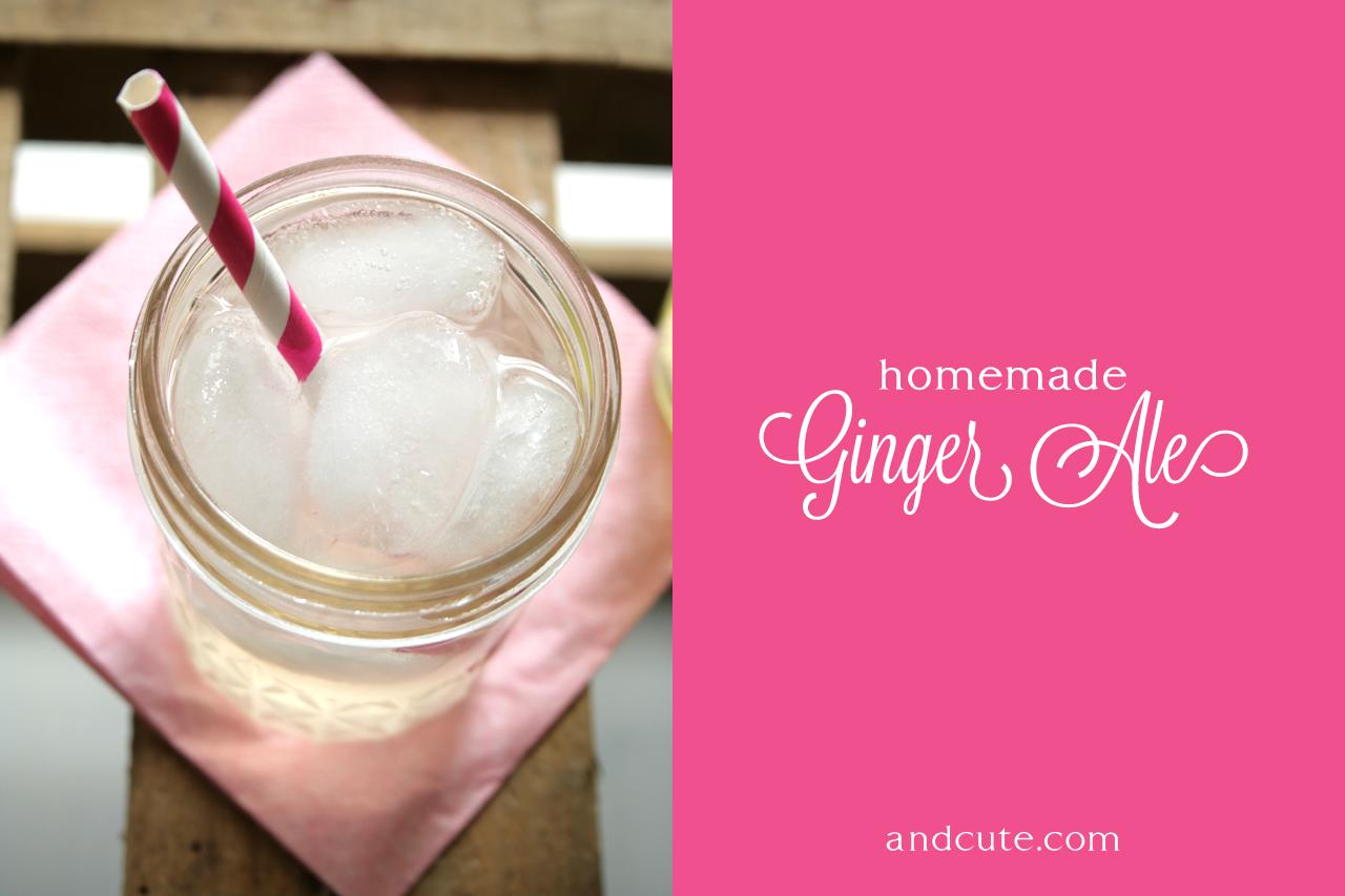 Glass of Homemade Fresh Ginger Ale
