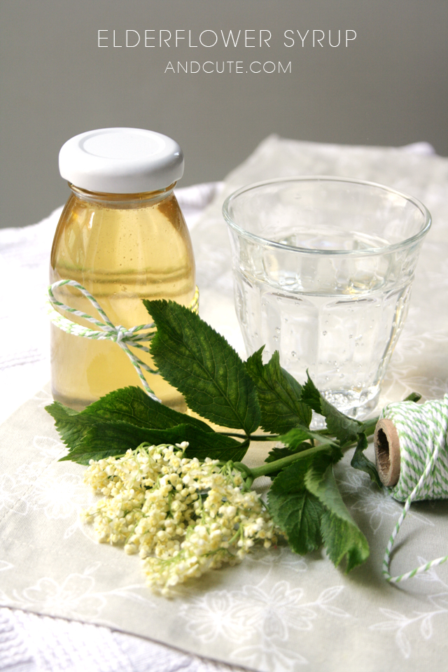 Elderflower Syrup and Bubbly Water